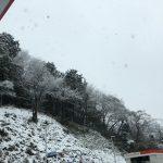 雪かきとスノースコップのオススメ